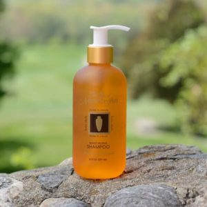 Buy Apricot Shampoo Norwich CT | The Spa at Norwich Inn